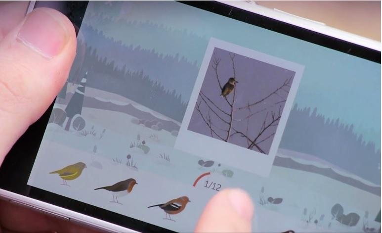 Jouez à observer les oiseaux avec l'application BirdLab du Muséum national d'histoire naturelle