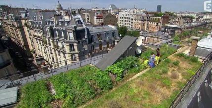 Ces potagers à 40 mètres de hauteur des boulevards parisiens