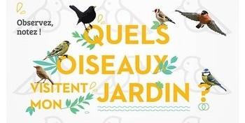 Quels oiseaux visitent votre jardin ?