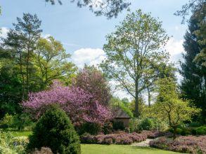 Dimanches d'Automne de l'Arboretum des Grandes Bruyères