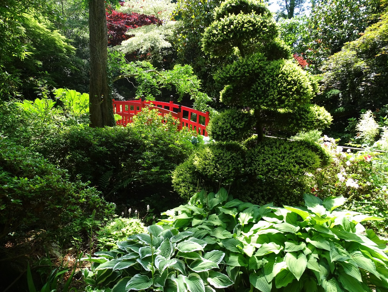 parc botanique de haute bretagne beaux jardins et potagers. Black Bedroom Furniture Sets. Home Design Ideas