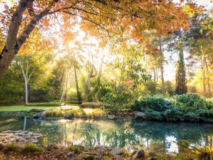 L'Automne à l'Arboretum des Grandes Bruyères