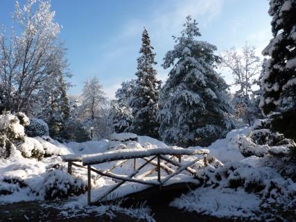 Arboretum des Grandes Bruyères sous la neige - février 2018