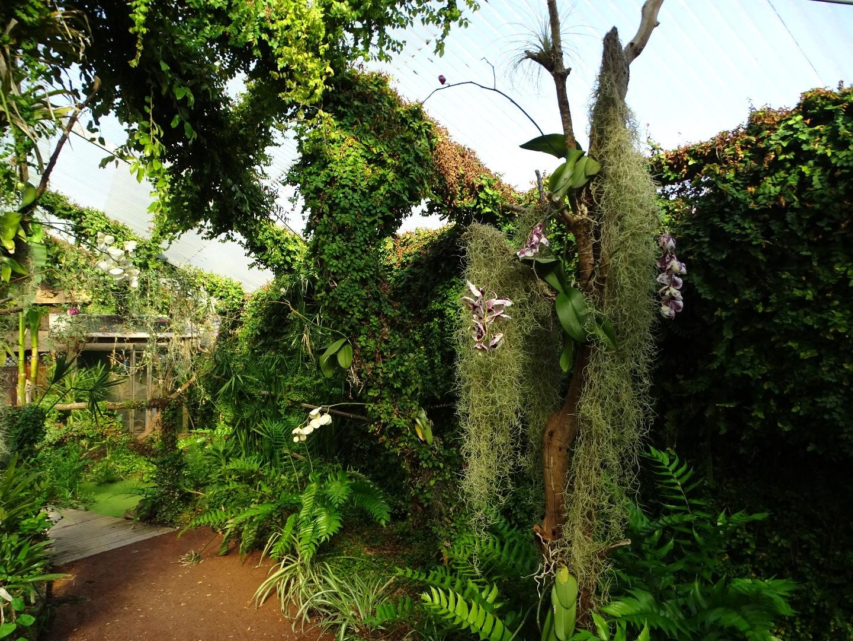 Le Parc Floral de la Court d\'Aron - Beaux jardins et Potagers