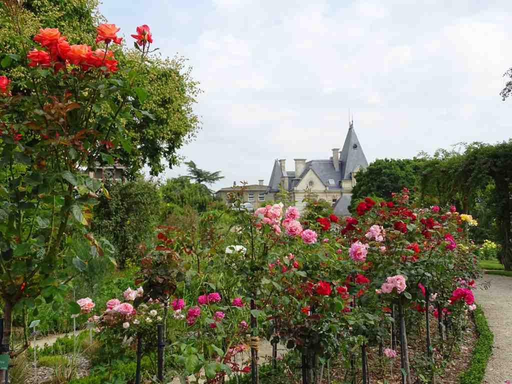 Parc du thabor le jardin botanique et la roseraie for Bd du jardin botanique
