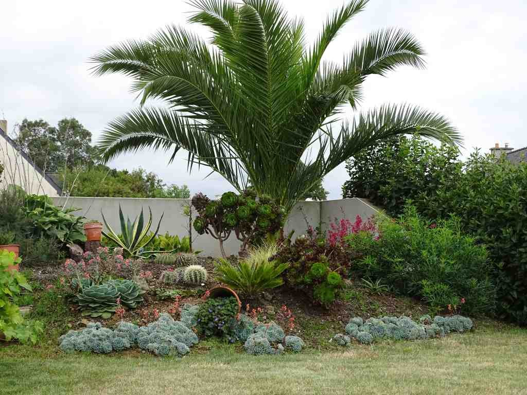 Le jardin d 39 ornement beaux jardins et potagers for Plantes ornement jardin