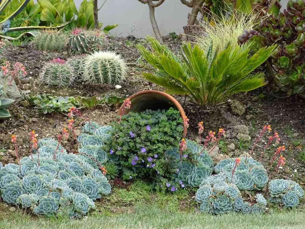 Le Jardin d\'ornement - Beaux jardins et Potagers