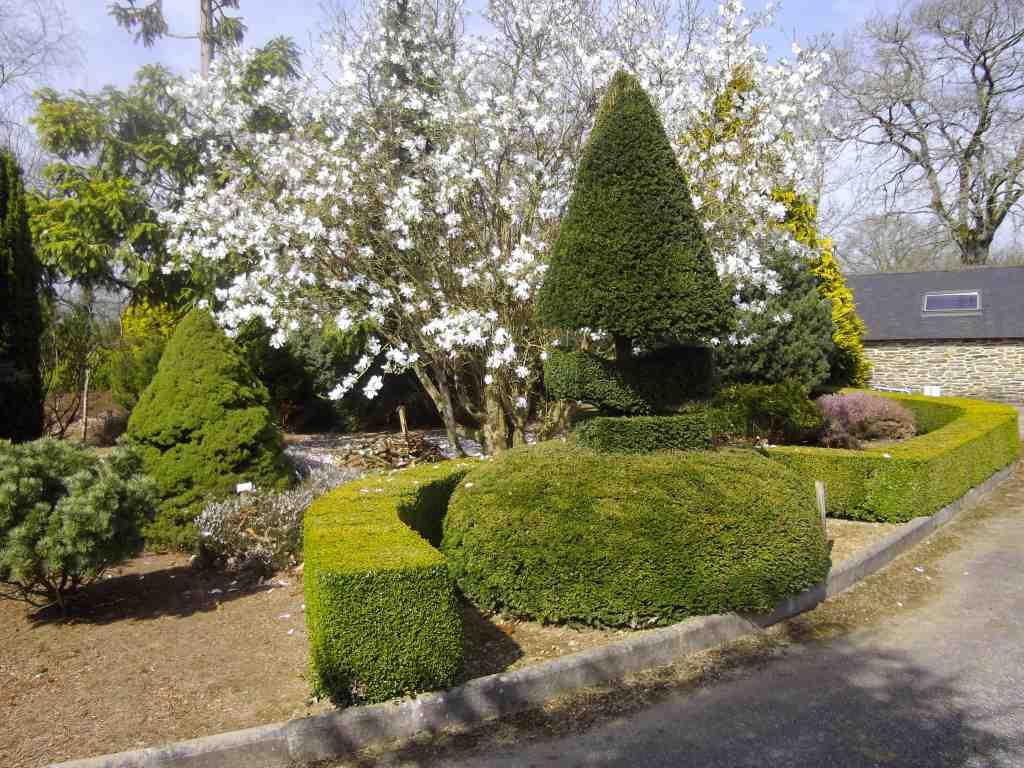Jardin botanique des montagnes noires beaux jardins et for Jardin feerique ploeuc