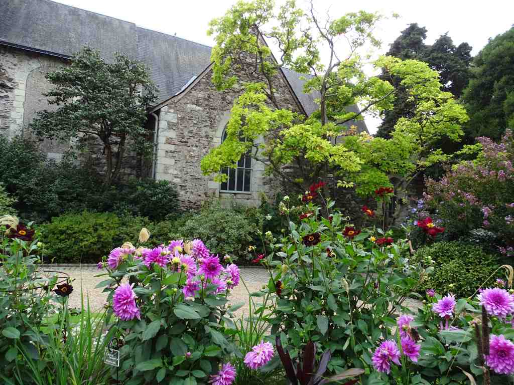 Collection de dahlias au jardin des plantes beaux for Au jardin des plantes