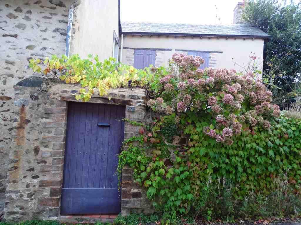 Saint denis d 39 anjou autour du relais de la cal che beaux jardins et potagers - Jardin potager bio saint denis ...