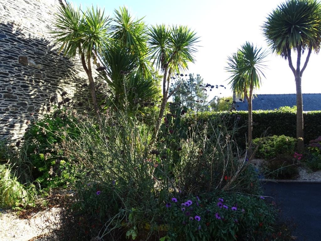 Jardin d 39 agr ment de la mairie et glise de caurel beaux for Jardin feerique ploeuc