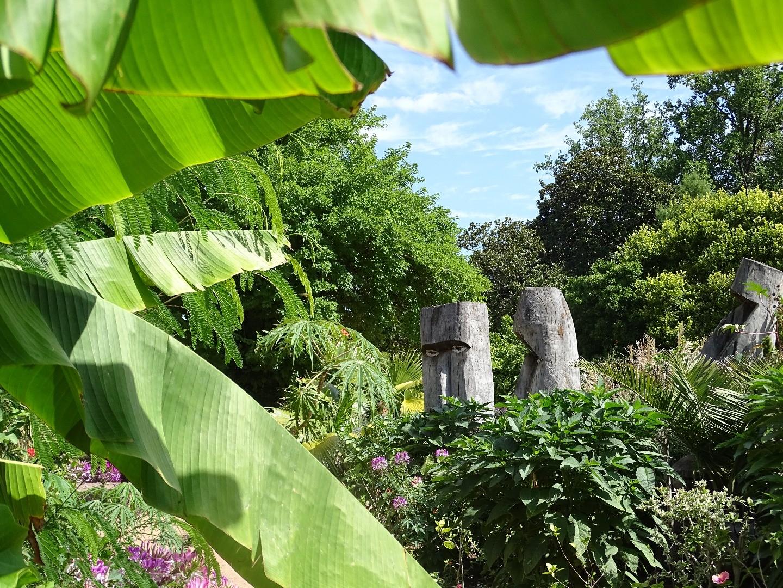 Le jardin mexicain du parc de la t te d 39 or beaux jardins for 9 rue du jardin des plantes 69001 lyon