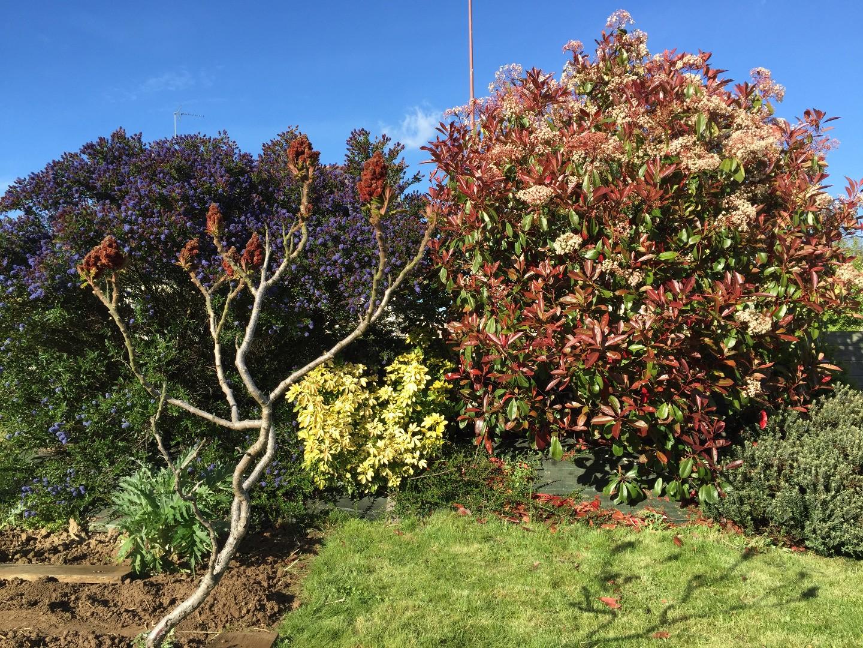 Le jardin de catherine beaux jardins et potagers for Le jardin de catherine