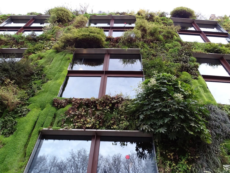 Le jardin vertical du musée du Quai Branly - Beaux jardins et Potagers