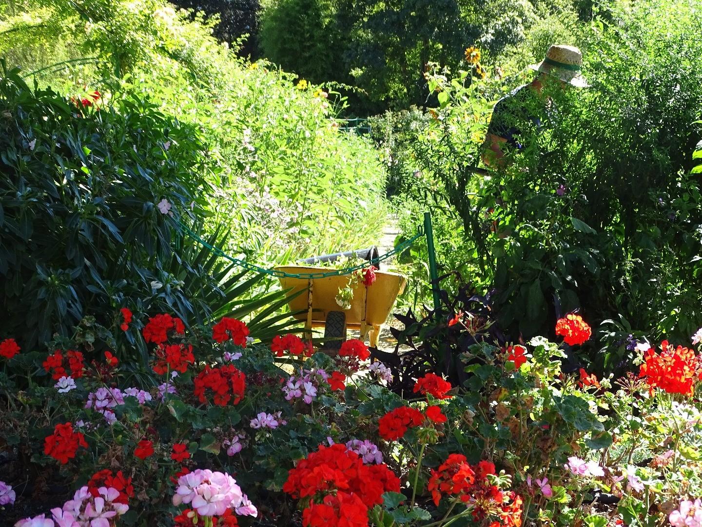 Le clos normand le jardin aux fleurs de claude monet - Livre le jardin de monet ...
