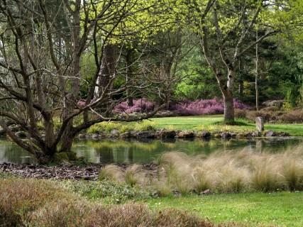 Bienvenue dans vos Arboretums