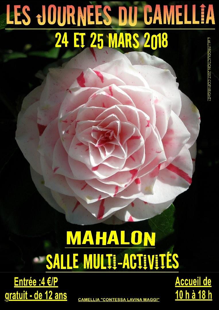 Les journées du camellia à Mahalon
