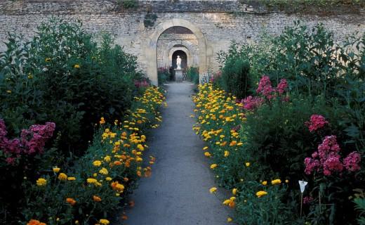 Conférences de l'Institut Européen des Jardins et Paysages