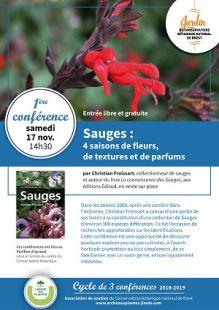 La sauge, 4 saisons de fleurs, de textures et de parfums