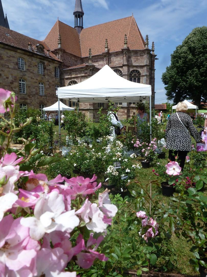 Fête des roses à l'abbaye d'Autrey !
