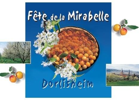24ème Fête de la Mirabelle le dimanche 25 août 2019