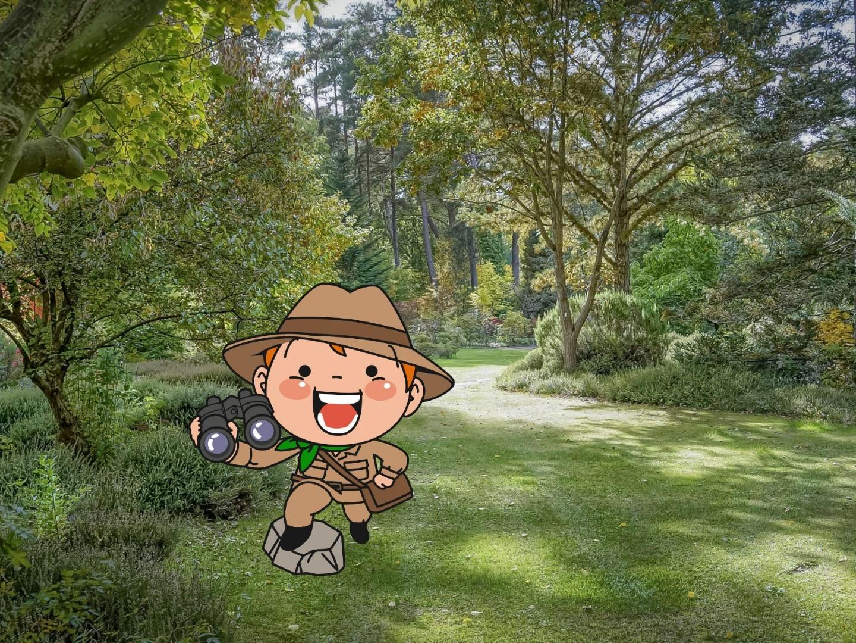 Expédition botanique dans l'Arboretum - jeu de piste