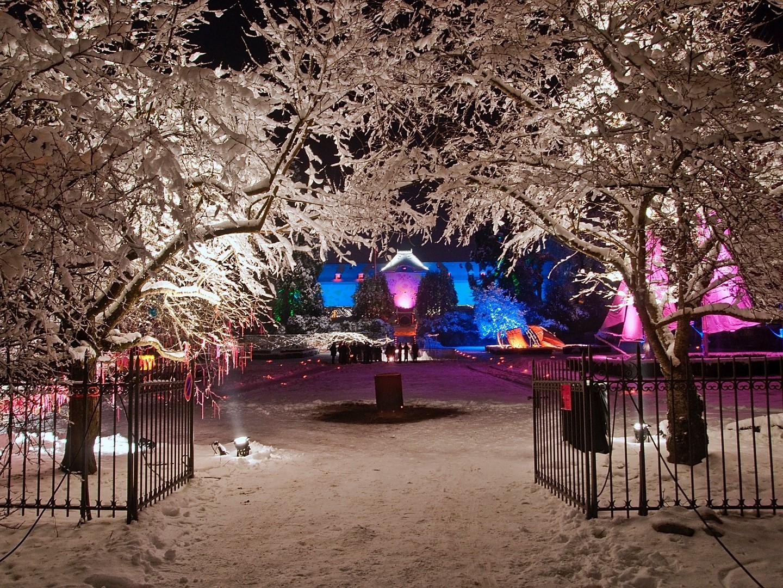 Noël au Jardin - Le Grincheux a volé Noël
