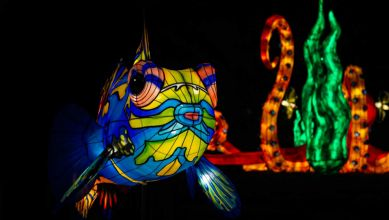 Sculptures lumineuses géantes au Jardin des Plantes de Paris