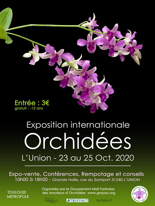 Exposition internationale d'orchidées en Occitanie