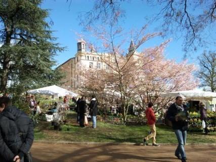 Foire aux Plantes de Saint-Priest - 2021