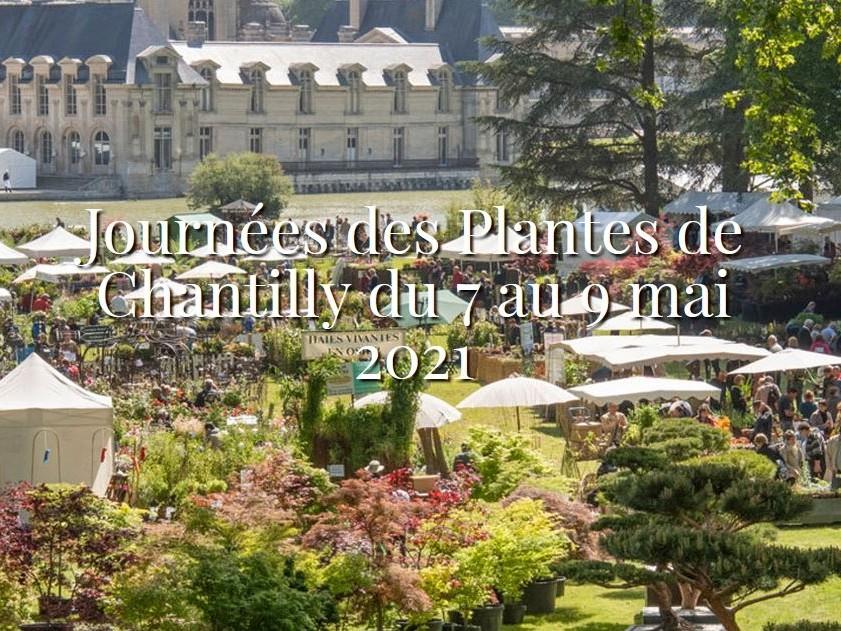 Journées des Plantes de Chantilly mai 2021 : L'Eveil des sens