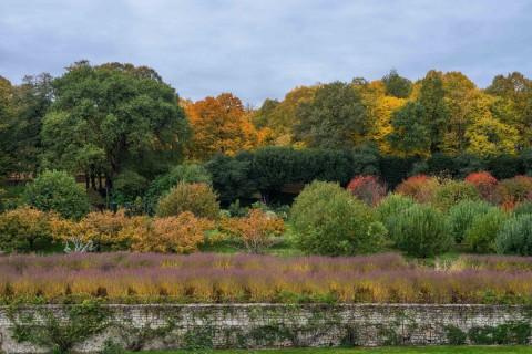 Fête des plantes d'automne au Château du Rivau