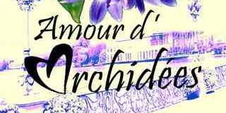 Amour d'orchidées à Enghien les Bains  par l'association Orchidée 95