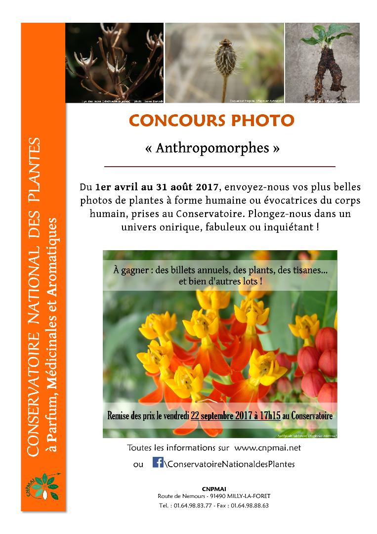 Concours Photo à Milly-la-Forêt (91)
