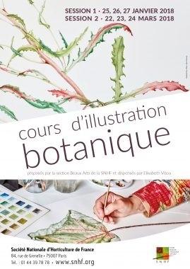 Cours d'illustration botanique
