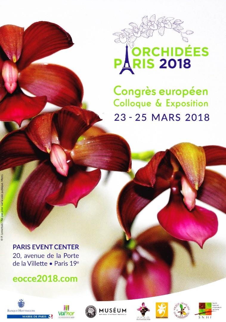 Les Orchidées déferlent sur Paris…